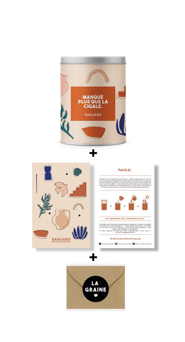 kit à planter basilic
