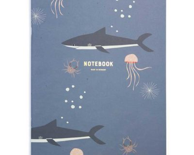 cahier-requin-please-to-meet