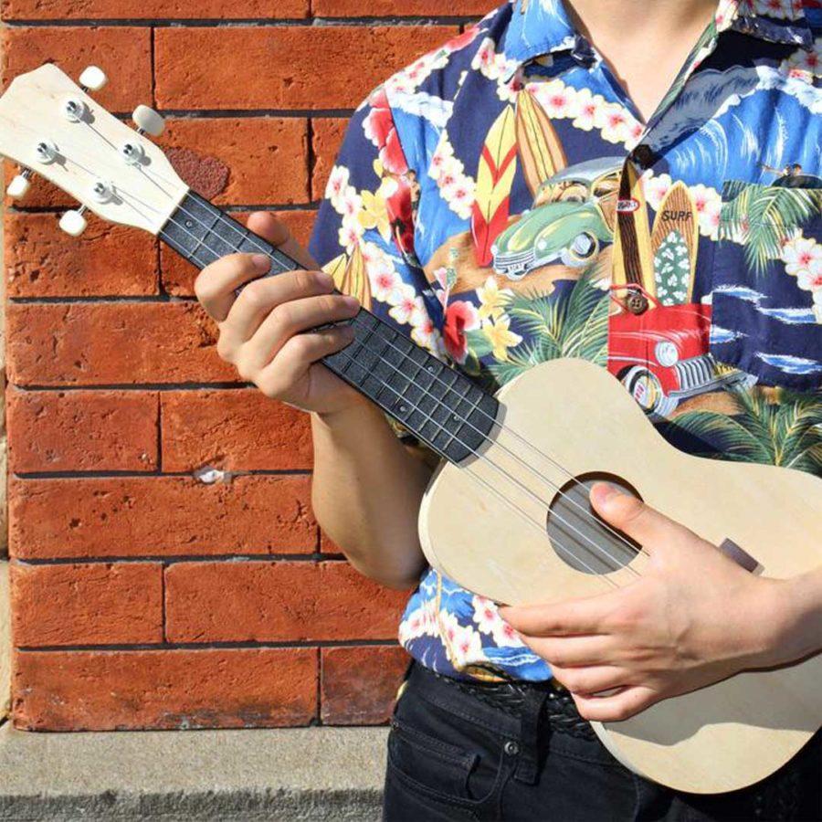 make-your-ukulele-kikerland